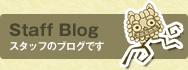 Staff Blog スタッフのブログです
